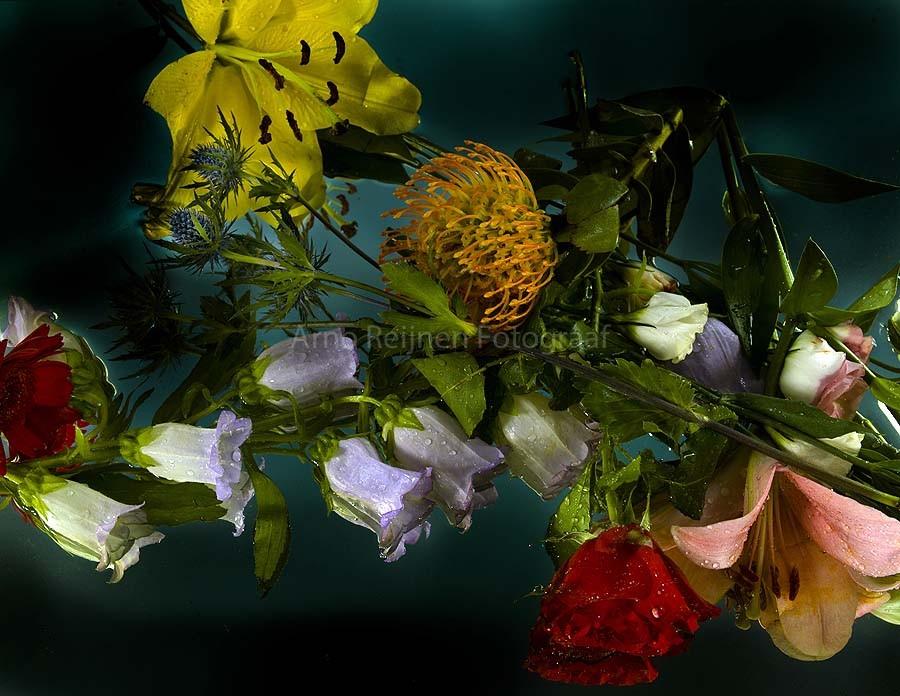 Zun bedrukt Bloemen 3